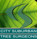 City Suburban Tree Surgeons Ltd